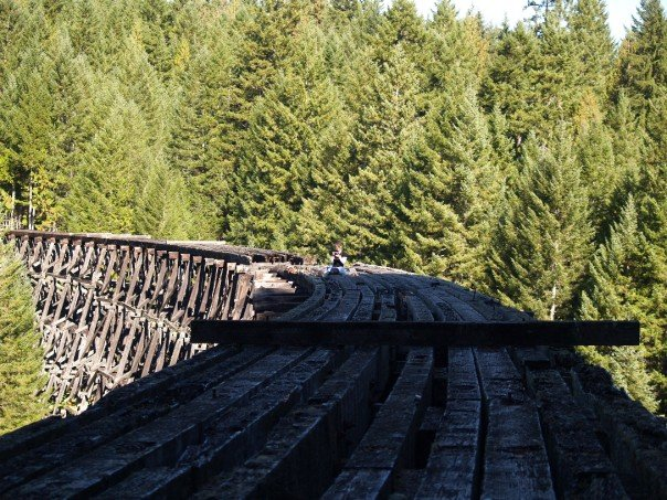 Kinsol Trestle gets Financial Support from Province