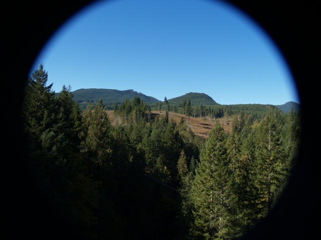 """ART and the 'Gateway"""" to the Cowichan Regional Trail"""
